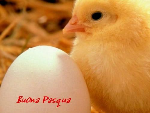 Eventi e manifestazioni per Pasqua in Toscana